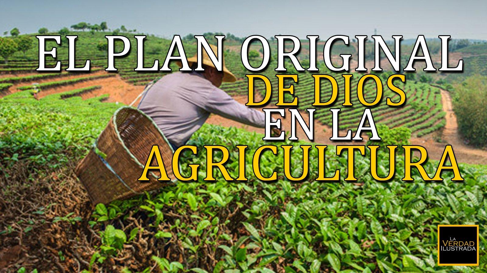 El plan original de Dios en la agricultura