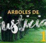 Árboles de Justicia - Nuestro derecho e idoneidad para la vida eterna