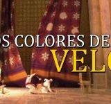 Los colores del velo